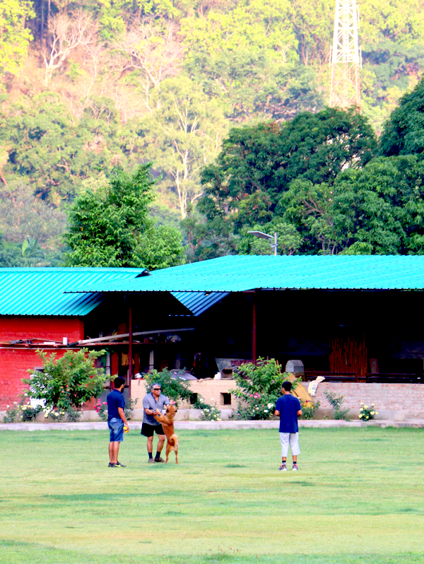 Cricket Matches in Corbett